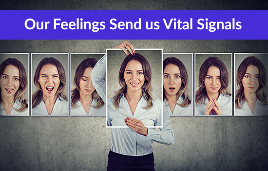 Our Feelings Send us Vital Signals, Marshall Connects
