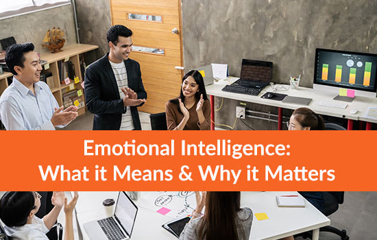 Emotional Intelligence: What it Means & Why it Matters, Marshall Connects